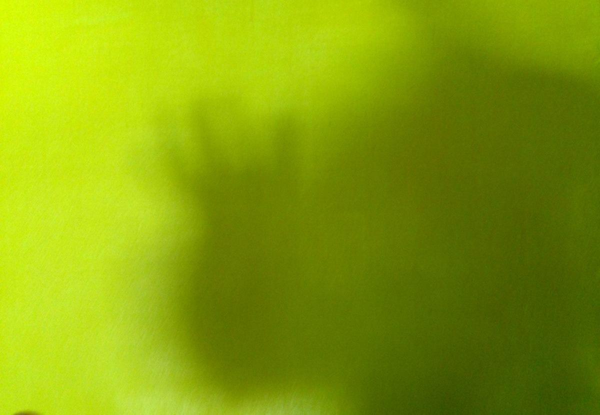 André Clouâtre, Photo de mon ombre sur une toile jaune, 203