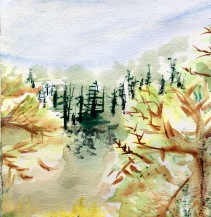 Forêt Entre deux bouleaux