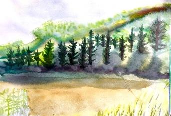 Forêt Vu de la plage